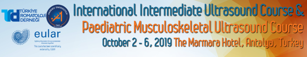 International Intermediate  & Paediatric Musculoskeletal Ultrasound Course