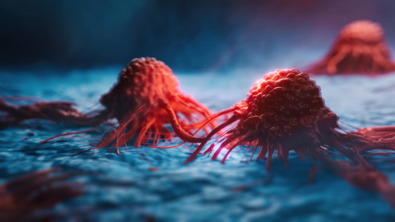 kanser hucrelerinde bagisiklik gizlenmesi ve immunoterapi icin cikarimlar - Kanser İmmünoterapisi Nedir?