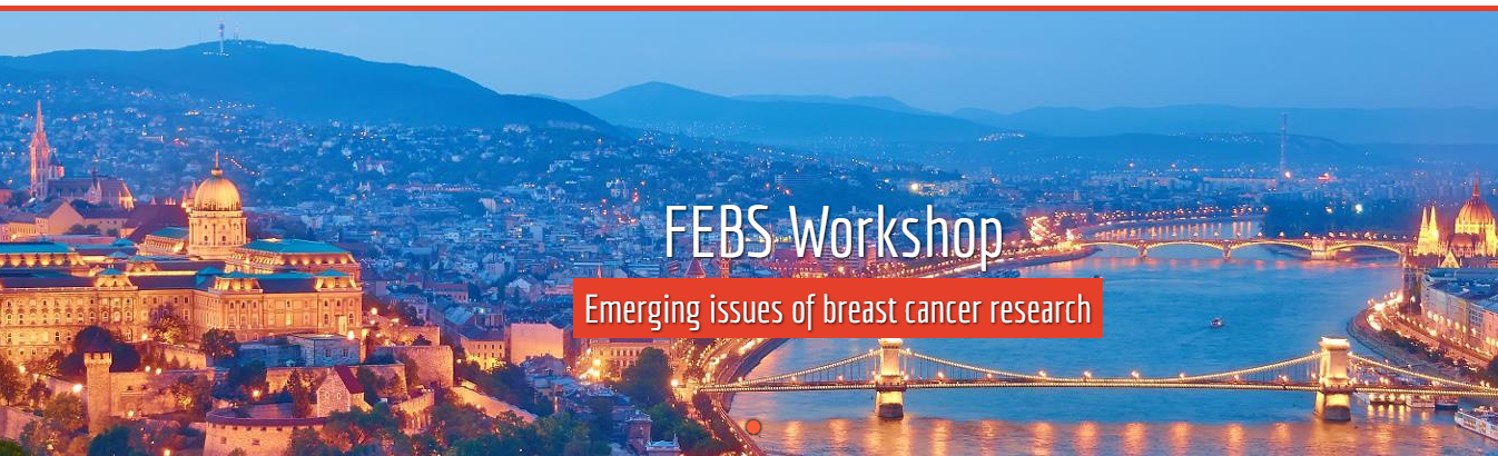 FEBS Breast Cancer Research