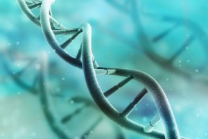 İPF'de Gen Ekspresyon Analizleri