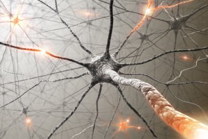 Alzheimer Hastalığında Dejenerasyon Paternleri