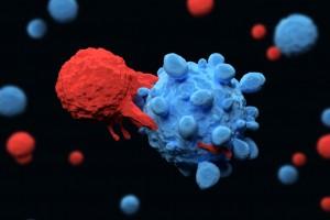 Bellek T Hücrelerinin Kanser İmmünolojisinde Rolü
