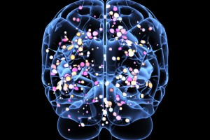Cinsel Yönelimi Beyindeki Bağışıklık Hücreleri Etkiliyor