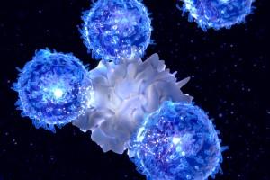 Kanser Tedavisinde Kontrol Noktası İnhibitörleri ve Kardiyotoksisite