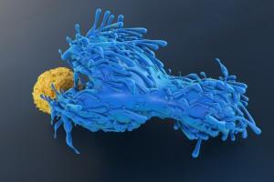 HIV Pozitif Kanser Hastalarında İmmün Kontrol Noktası İnhibitörleri Ne Kadar Güvenli?