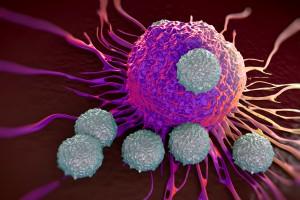 Kanserle Mücadelede NK Hücreleri