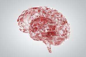 Bilim İnsanları Yapay Kan Beyin Bariyeri Geliştirdiler