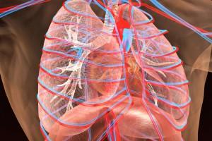 Akciğer Kanserinde Endobronşial Ultrason Eşliğinde Transbronşial İğne Aspirasyonu