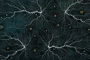 Hematolojik Malignitelerde Nörolojik Komplikasyonlar