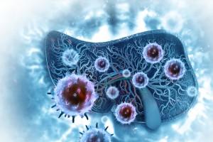 Kanser Hücrelerini Hedefleyen Nanopartiküller