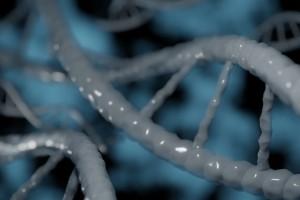 Yapay Genom ile Yaşam Benzeri Sistemler Oluşturmak Mümkün mü?