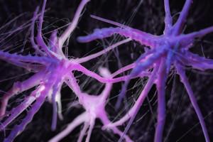 Kemokinlerin ve Kemokin Reseptörlerinin Multipl Sklerozdaki Rolü