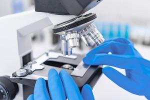 Romatizmal Hastalıklarda Sinovyal Biyopsi Analizlerinin Standardizasyonu