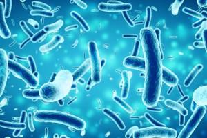 Bakteri, Virüs ve Diğer Bulaşıcı Patojenler Alzheimer Hastalığında Rol Oynayabilir mi?