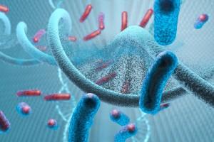 PD-L1, Meme Kanseri Kök Hücreleri Üzerinde Notch3 / mTOR Ekseni Aracılığıyla Aşırı Eksprese Edilebilir Mi?