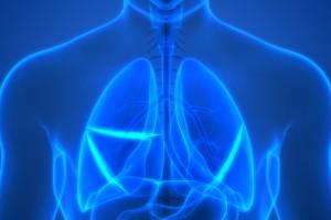 Çalışma, Yaşa Bağlı Pulmoner Fibroz İçin Tedavi Geliştirmeye Yardımcı Olabilir