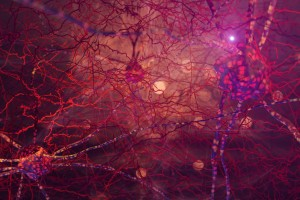 Parkinson Hastalığı İçin Umut Verici Bir Tedavi
