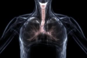 COVID-19 Hastalarından Alınan Akciğer Dokusunun 3 Boyutlu Sanal Patolojisi
