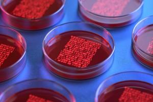 Primeri Bilinmeyen Kanserde Yeni Yaklaşımlar