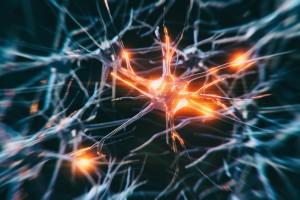 Beyinde Üretilen Fruktoz Alzheimer'ı Çalıştıran Bir Mekanizma Olabilir