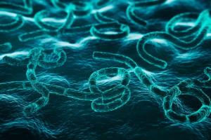 Bağırsak Mikrobiyotasının Multipl Sklerozdaki Rolü