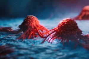 Kanser Hücreleri Tümör Mikro Ortamlarında Hayatta Kalmaya Nasıl Uyum Sağlar?