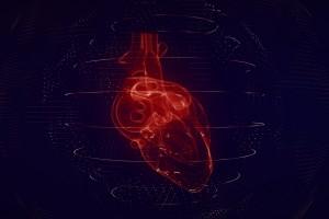 Hidrojel Enjeksiyonu, Kalp Krizi Sonrası Kalp Kasında Oluşan Hasarı Onarmaya Yardımcı Olabilir mi?
