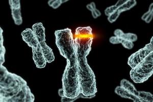 Hücrelerimizdeki Mutasyonlar ve Kanser Riski