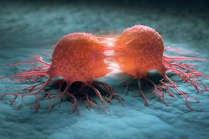Tüm Kanser Hücrelerinden Neden Kurtulamayız?