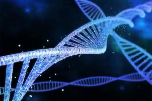 Spinal Müsküler Atrofili Bebeklerde Artmış Sistemik HSP70B Düzeyleri