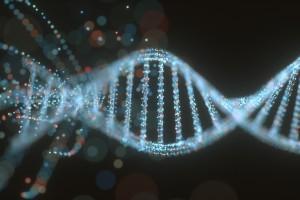 microRNA-146a Geninde Romatoid Artrit Riski ile İlişkili Genetik Varyant