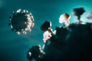 SARS-CoV-2 Alpha, Delta ve Epsilon Varyantlarında Bulaşıcı Virüsün Nicel Ölçümü ile Varyantların Yüksek Bulaşıcılığı